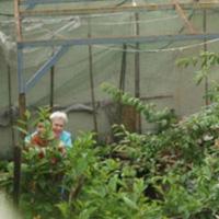 Bioagricoltura-2-t